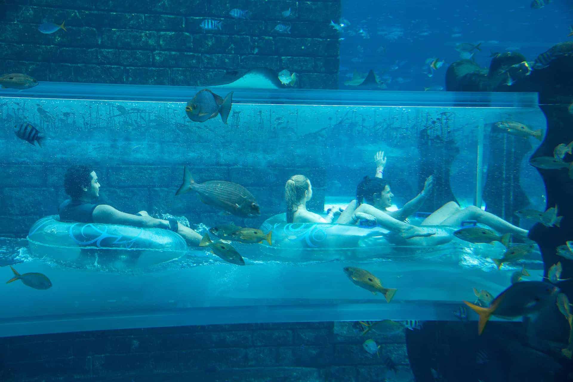 meilleur parc aquatique dubai